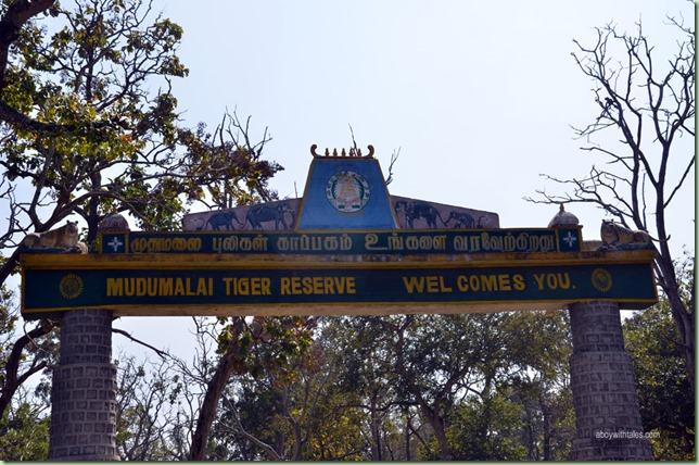 Mudumalai-trip2